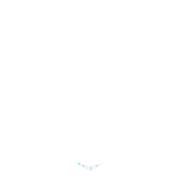 Logo pishiki mikana etre decider agir